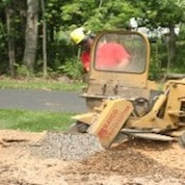 Stump Grinding Ocala FL
